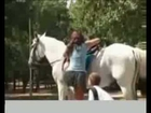 Hot Girl Upskirt Horse Prank
