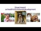 Animal Rescue -Animal Lovers, Animal Welfare & Animal Rights Activists