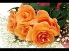 Isharon Isharon mein dil lene wale mohd rafi song - www.desisarees.com