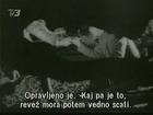Covek iz hrastove sume 1964 / Domaci film  I. od II. Deo